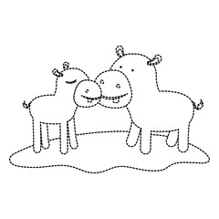 hippopotamus couple over grass in black dotted contour vector illustration