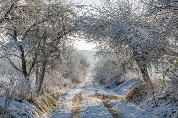 verschneite Winterlandschaft