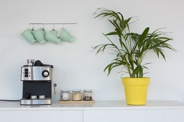 Coffeemaker, pot plant and mugs hanging on hook