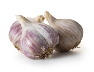 organic garlic closeup