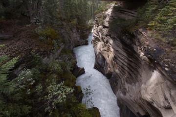 Athabasca Falls in Jasper National Park
