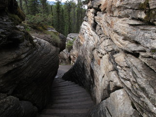Hiking trail at Athabasca Falls in Jasper National Park