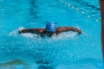 Swimmer African Butterfly Action