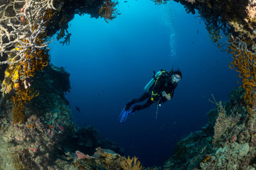 sea fan on the slope of a coral reef with a diver at depth