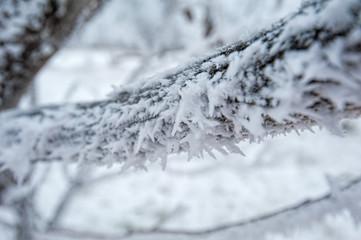 Winter landscape in Russia
