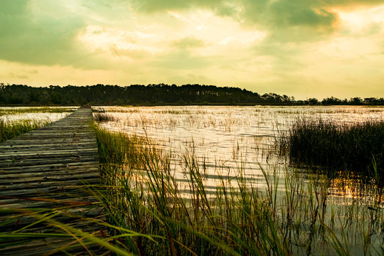 wooden pier in south carolina low country marsh at sunset with green grass