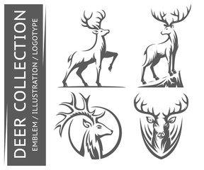 Deer collections emblem, illustration. logotype on a white background