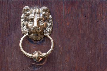 Lion head door knocker on  wooden background