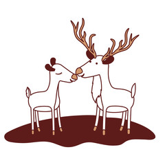 deer couple over grass in color sections silhouette vector illustration