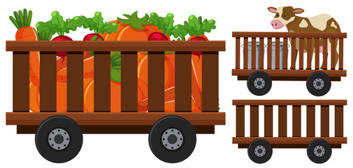 Vegetables and cow in the wooden wagons