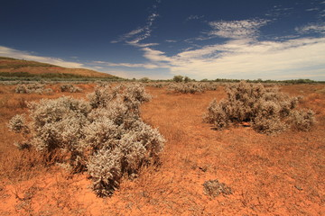 Impressions of australian outback