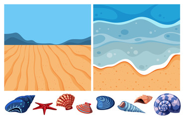 Two ocean scenes with many seashells