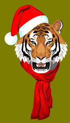 tiger, in a Santa's Cap with a pompon and scarf
