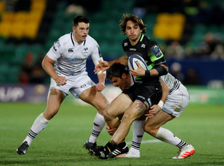 European Champions Cup - Northampton Saints vs Ospreys
