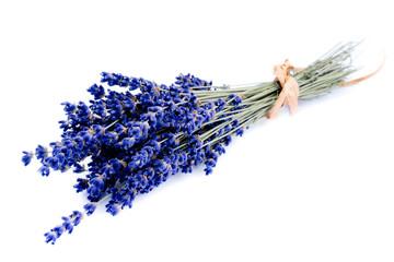Echter Lavendel Bund gebündelt isoliert freigestellt auf weißen Hintergrund, Freisteller gebunden