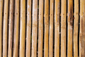 Warm brown wooden plant table photo background. Wooden plank table top view.