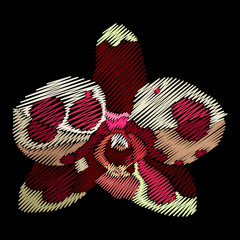 Decorative embroidery orchid.