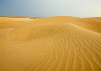 Sand dunes in Rajasthan, India. These dunes are one of the major tourist attractions near to Jaisalmer. Tourists can enjoy unforgettable camel safari ride over here.