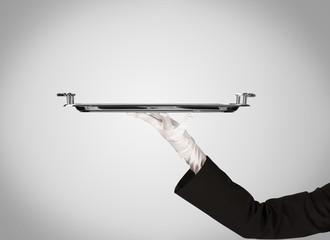 Presentation on plate by stylish hand