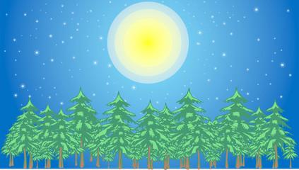 星空と満月と森のイラスト