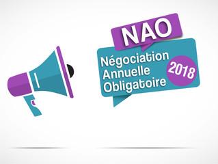 megaphone Nao 2018