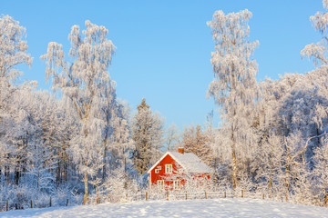 Red cottage in wintry forest