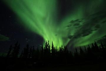 Aurora borealis in Yellowknife, Northern Territory, Canada