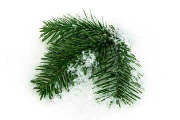 Tannenzweig im Schnee