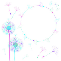 Abstract frame of a dandelion for design.