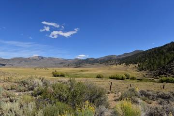 Trip to Nevada and California, USA