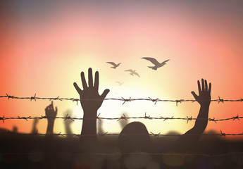International migrants day concept: Silhouette refugee hands raising and barbed wire on autumn sunset background.