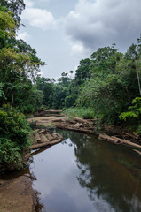 Landscape with tropical river flowing peacefully through lush rain forest of Nigeria, Africa