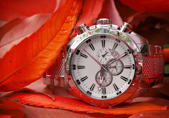 silver Automatic Watch