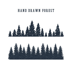 Hand drawn pine forest textured vector illustration.
