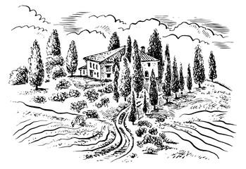 Tuscany landscape. Vector hand drawn graphic illustration.