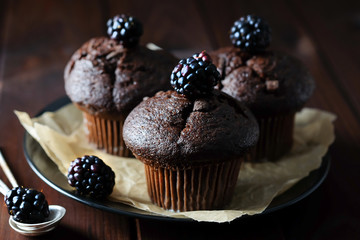 Chocolate muffins decorated with blackberry.