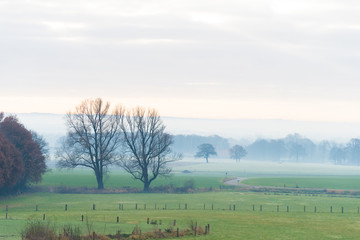 dutch agricultural landscape