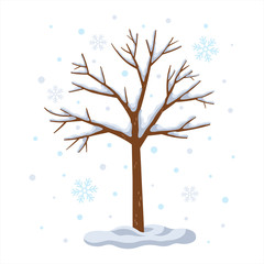 Winter tree with snowy isolated on white background