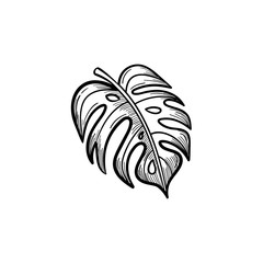 Vector hand drawn palm leaf outline doodle icon. Palm leaf sketch illustration for print, web, mobile and infographics isolated on white background.