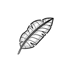 Vector hand drawn banana leaf outline doodle icon. Banana leaf sketch illustration for print, web, mobile and infographics isolated on white background.