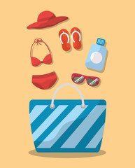 summer elements bag bikini sunglasses hat sandals sunblock vector illustration