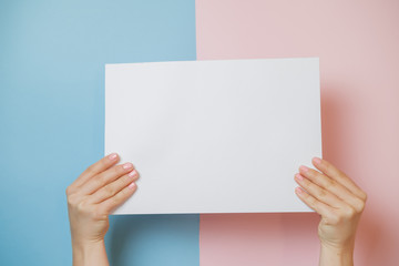 Hands holding paper blank a4 size on pink and blue background