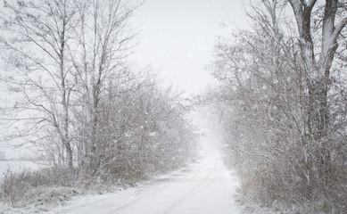 Beautiful winter landscape a snowy day