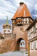 Chatenoix. La Tour des Sorcières et nid de cigognes. Bas Rhin. Alsace