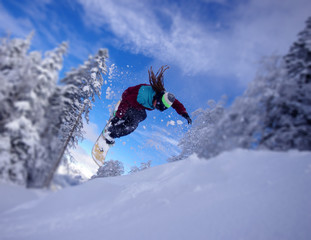 focus - freestyle en snowboard
