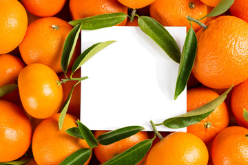 Tangerines and empty card.