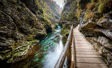 Soteska Vintgar, The Vintgar Gorge or Bled Gorge in Slovenia.