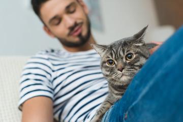 close-up shot of young man petting cute tabby cat