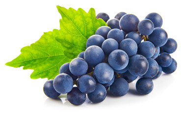 Blue grapes with green leaf healthy eating, isolated on white
