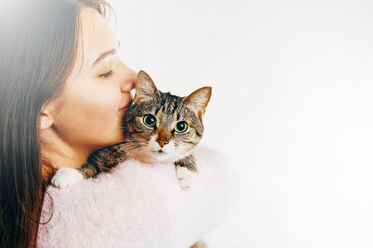 girl kisses a beautiful cat, beautiful girl hugs a cat, girl holding a cat, gentle picture of a beautiful cat and girl